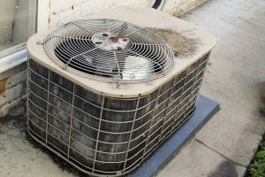 Different Effects of Animal Damage on HVAC