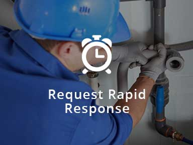 Request Rapid Response
