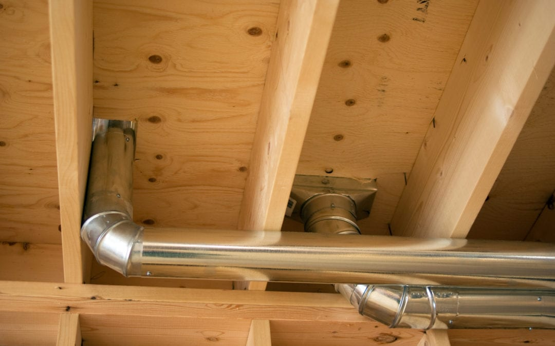 Handling Dead Rodents in Your Ductwork