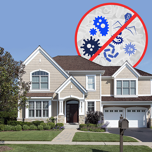 Virus graphic on home